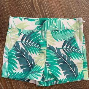 Janie and Jack Floral Shorts Size 3t